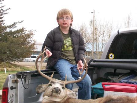 2008 Deer-2008-deer.jpg