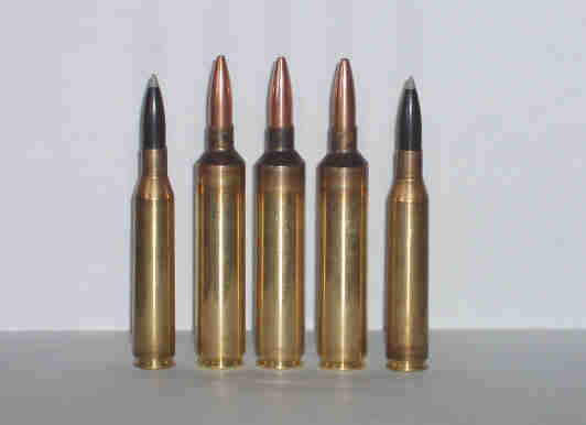 264 Win Mag / new life? - Shooters Forum