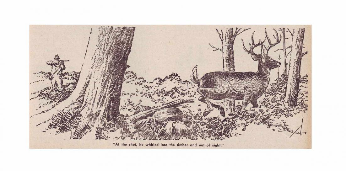 bullet performance on deer-shot-ar-12-1946.jpg
