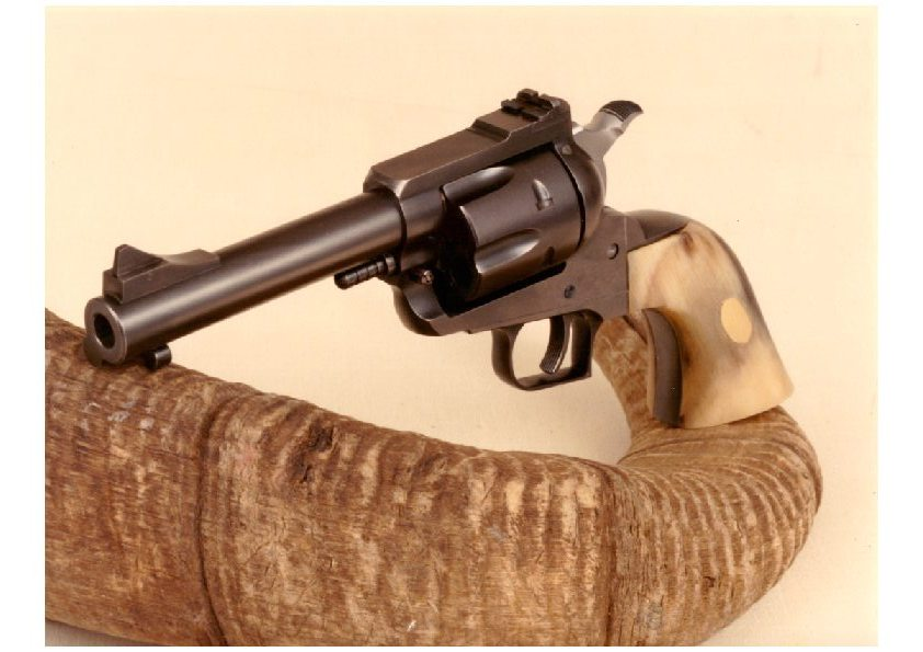 Old model Ruger Vaquero find - Shooters Forum