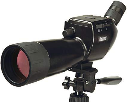 www.shootersforum.com