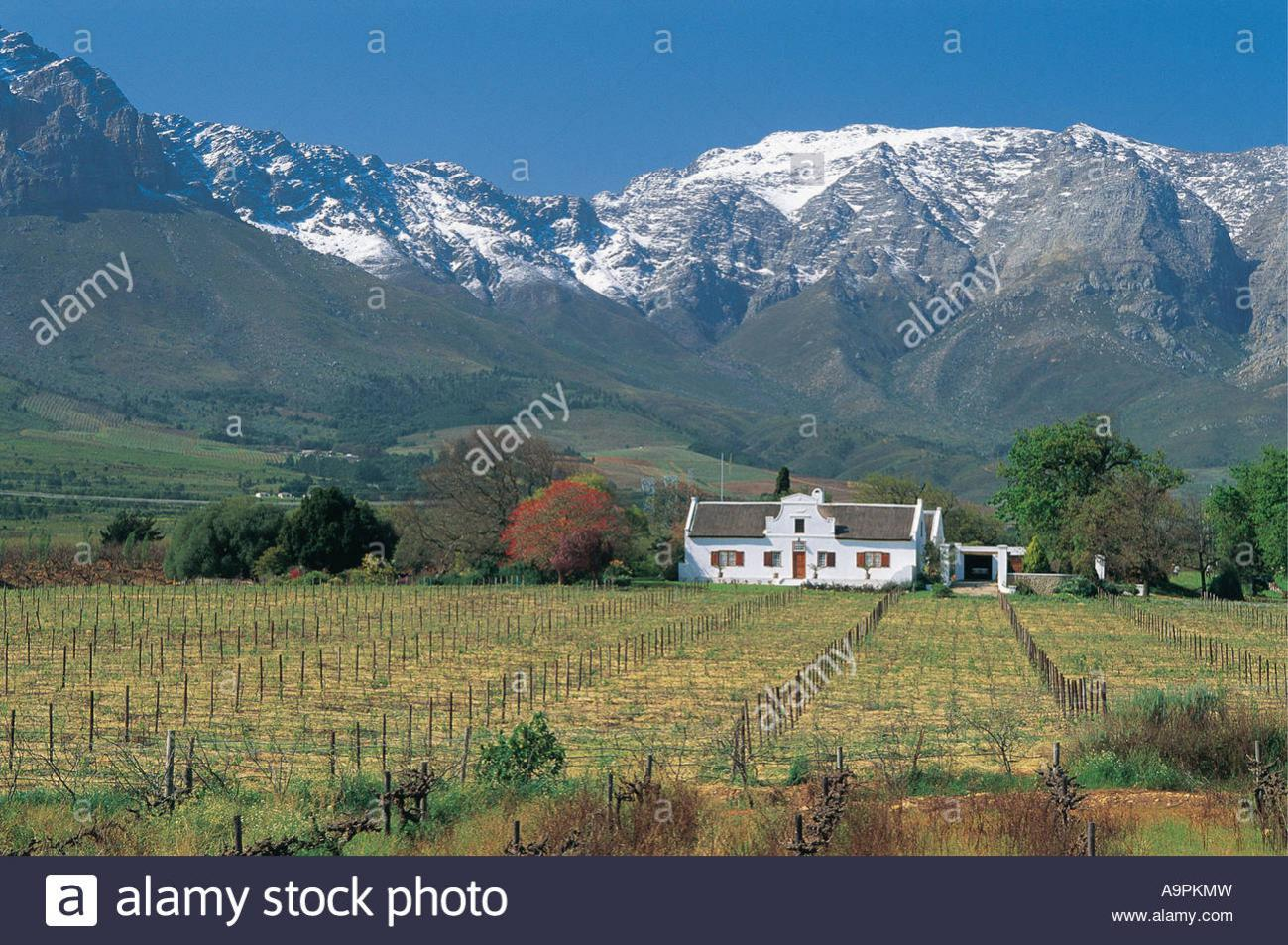 The seven most dangerous snakes in South Africa-cape-winter-scene-cape-dutch-style-famhouse-vineyard-ceres-western-a9pkmw.jpg