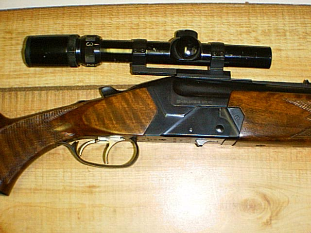Hi and CZ Bruno? - Shooters Forum