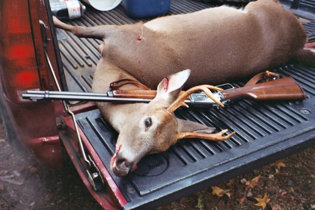 Bullet of choice for deer in  44 mag  - Shooters Forum