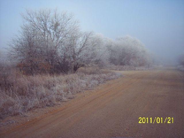 Kdub's hog-frost.jpg