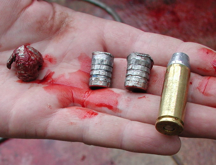 Hard Cast Bullets For Bear