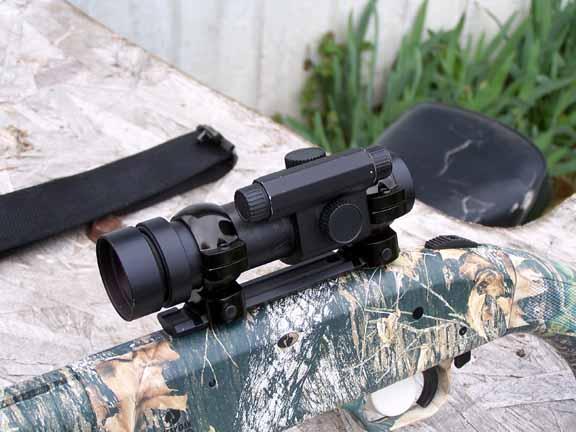 sight in slug gun