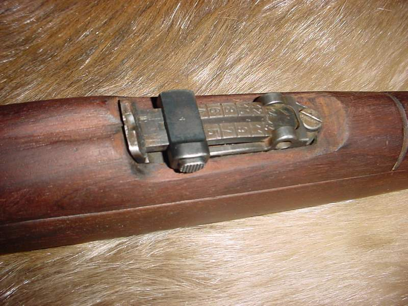 Dating argentine mausers