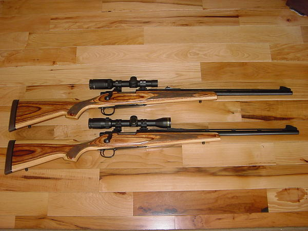 NC Bear hunt and 35 Whelen - Shooters Forum