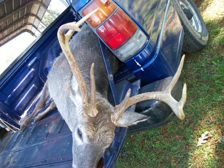 A couple deer pics I got.-rsz_100_0410.jpg