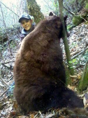 Nephew's bear!-tybear.jpg